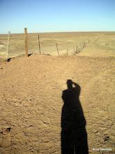 Photo: Dingo fence