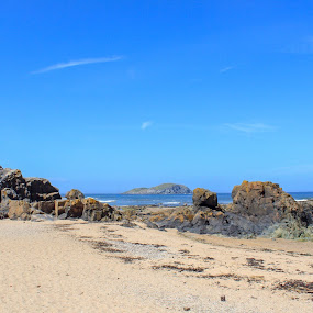 North Berwick  by Louise Corr - Landscapes Beaches