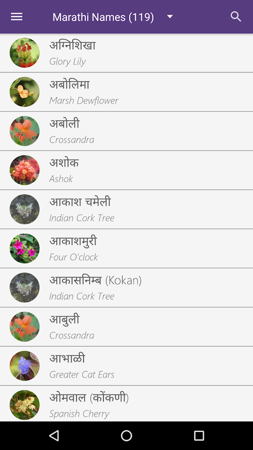 Flowers Name In Tamil And English With Pictures Hd