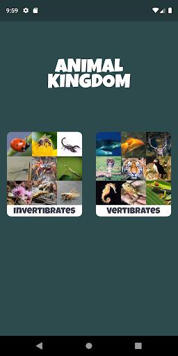 Download Animal Kingdom (wildlife & nature) 1.0.1 1