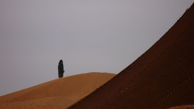 Photo: The peace of the desert
