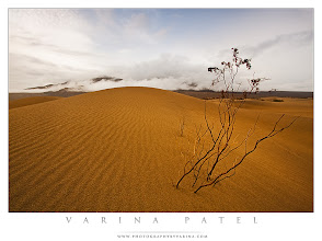 Photo: Free Webinar: Photographing Death Valley  +Jay Patel and I are offering a FREE webinar this Sunday, September 11 at 2pm EDT.  The topic is Death Valley National Park in California - and we'll talk about weather conditions, great locations within the park, what kind of gear we recommend bringing along if you make a trip out there, and so on. We'll also show some of the photos we've taken in the park over the years.  23 students should be able to join us live. We will post instructions for joining us on Sunday morning at the link below:  http://www.photographybyvarina.com/photography/blog/free-webinar-photographing-death-valley-national-park  We hope that some of you will decide to join us!