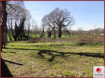 terrain à Saint-Etienne-de-Vicq (03)
