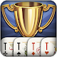 Throw-in Durak: Championship (game)