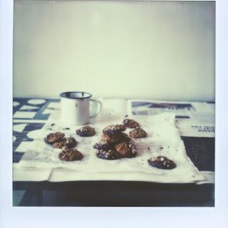Chocolate Dipped, Oatmeal-hazelnut Cookies.