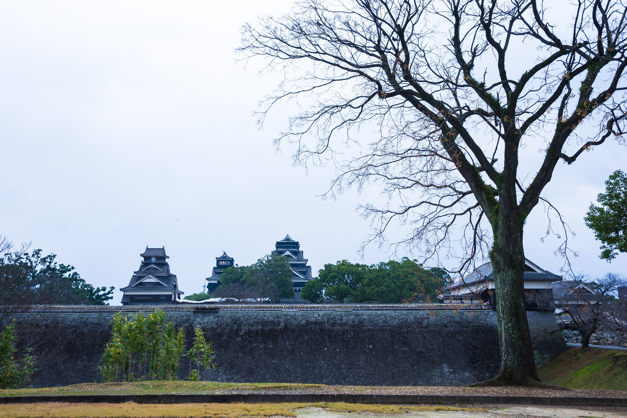 熊本城 二の丸広場2