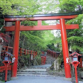 京都のパワースポット「貴船神社」で特別御朱印めぐりと青もみじを楽しむ!5月限定で夜間ライトアップも開催!