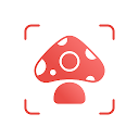 Picture Mushroom - 1秒キノコ図鑑