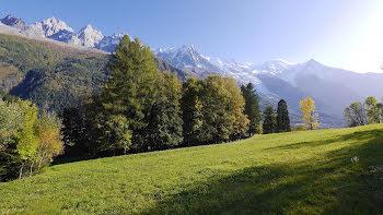 duplex à Chamonix-Mont-Blanc (74)