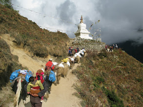 Photo: Stupa on the lowest trail to EBC above Namche