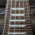 Electric Guitar Fretboard icon