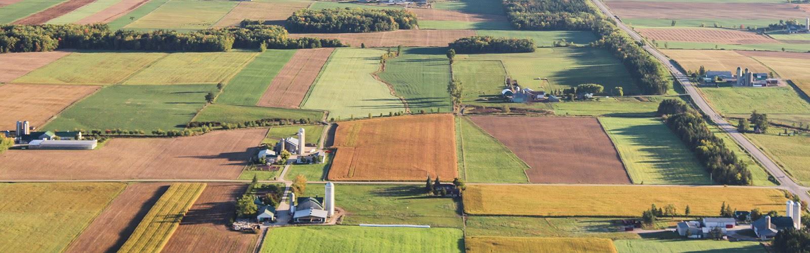 Recinzioni aree agricole