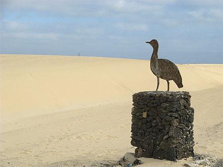 Photo Parc national de Corralejo