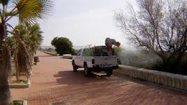 Trabajo contra los mosquitos en El Ejido.