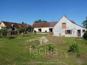 propriété à Apremont-sur-Allier (18)