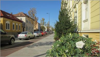 Photo: Cluj-Napoca - Str. Avram Iancu, Nr.31, datura - 2018.09.12