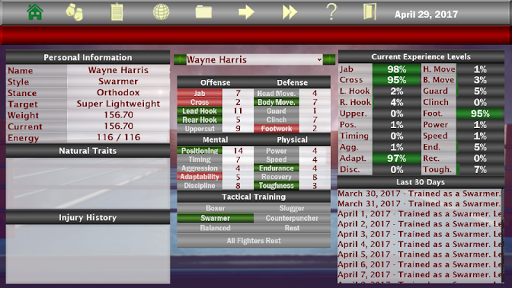 World Boxing Manager screenshot