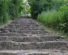 Photo: View up a natural stone stairway in the woods