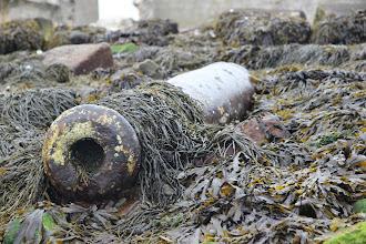 Photo: Un canon posé dans les rochers à Saint Marcouf