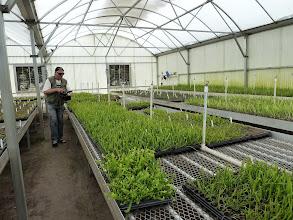 Photo: Siggi filming artificially produced Sarracenia at the AG3 nursery in Eustis (Florida).