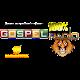 Radio 100 Gospel Download on Windows