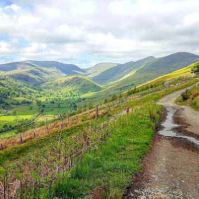 Day out by Nick Hogg - Landscapes Mountains & Hills ( labrador, lake district, hiking, dog, landscape )