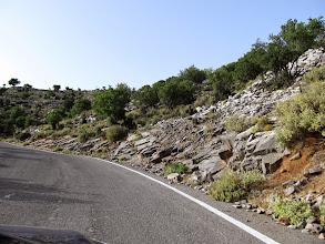 Photo: 07.Kamieniste pobocza z niską, suchą i kolczastą roślinnością.