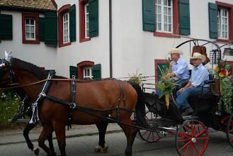 Photo: Schönes Pferdegespann