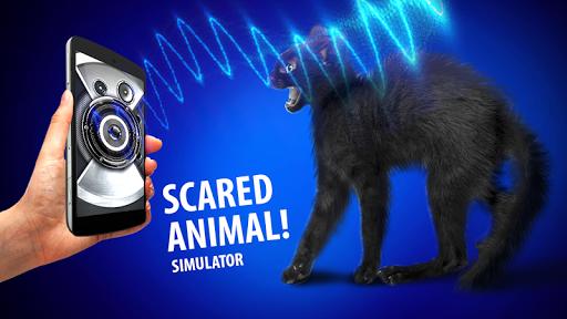 玩模擬App|宠物吓坏的模拟器免費|APP試玩