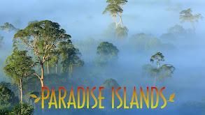 Paradise Islands thumbnail
