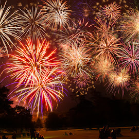 The Grand Finale by Chris Cavallo - Public Holidays July 4th ( new hampshire, celebration, crowd, 4th of july, fireworks, colorful,  )
