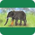 Game for Goodness:  Elephant's life awareness icon