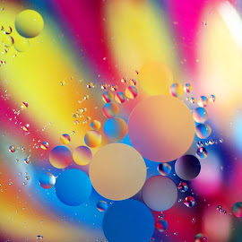 Orb Array by Janet Herman - Abstract Macro ( abstract, oil drops, macro, colors, ellipses, floating, orbs, array )