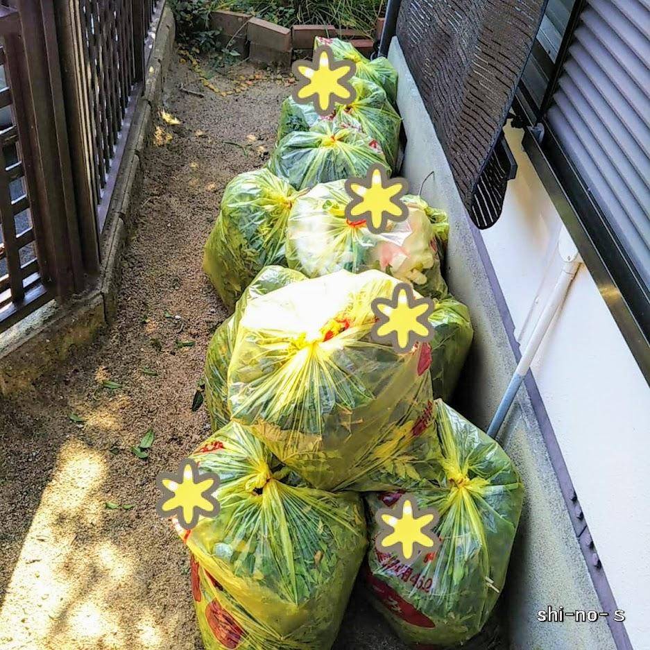 枝を入れたゴミ袋がいっぱい