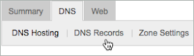 The DNS and DNS Records tabs are selected.