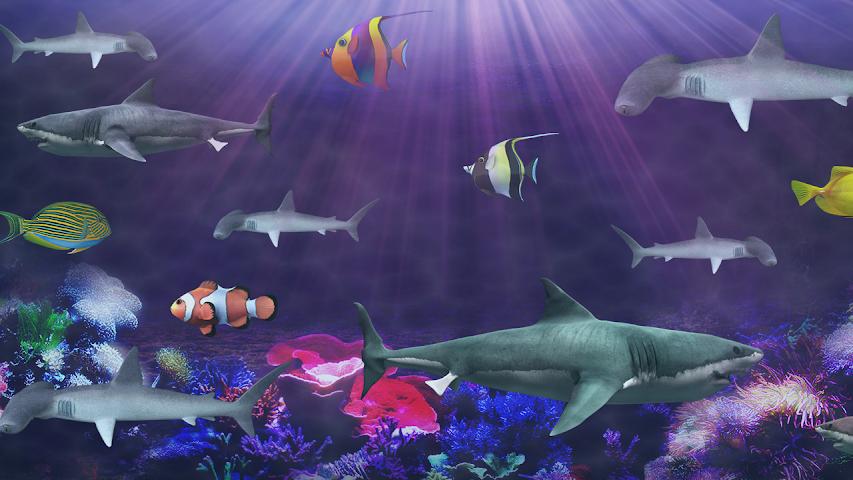 shark aquarium live wallpaper - photo #8