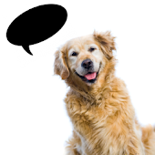 Dog Translator++   (Simulator)