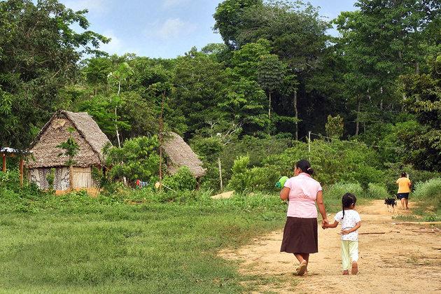 La comunidad de Buen Retiro en el norte de la Amazonía boliviana. Crédito: Teófila Guarachi/ONU Mujeres