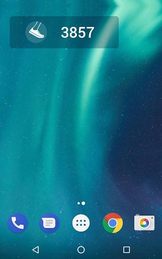 Pedometer screenshot 18