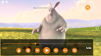 screenshot of VLC for Android