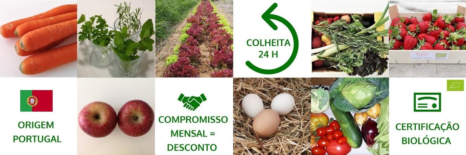 Cabazes Bio ao Domicílio - TVD e LNH 2021