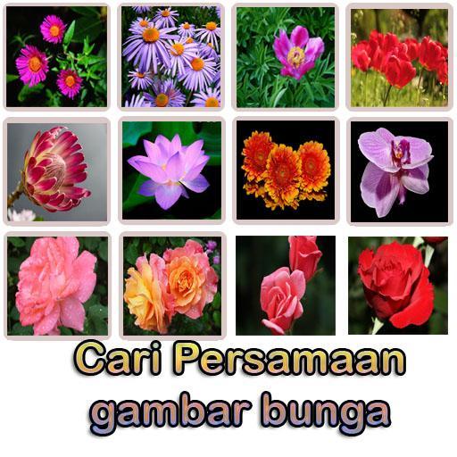 Bunga: Flower memory