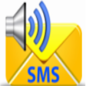 Auto SMS Text Message Reader