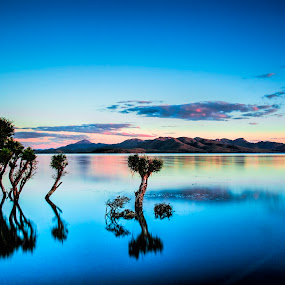 Lake Awoonga by Gurung Purna - Landscapes Waterscapes ( water, queensland, reflection, tree, blue, sunset, dam, lake,  )