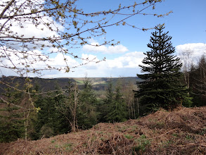 Photo: View from the Wye Valley Walk