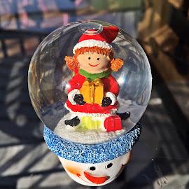Glob by Dobrin Anca - Public Holidays Christmas ( tree, decoration, green, brittany, garden )