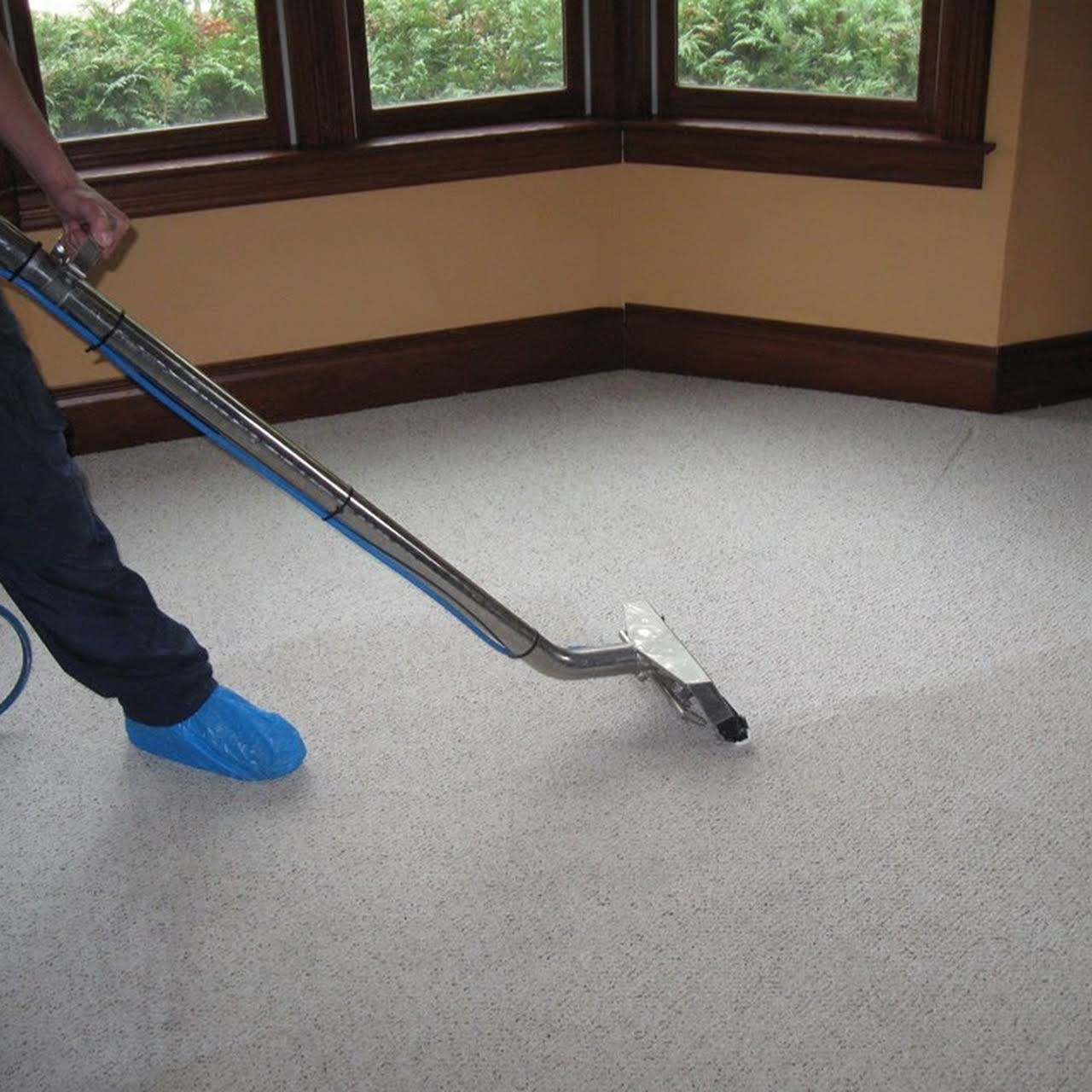 Justperfectcleaningservices Carpet Cleaning Service In