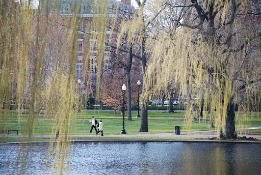 "Boston Common, a central public park in downtown Boston, dates from 1634. (Don't call it ""Boston Commons."")"