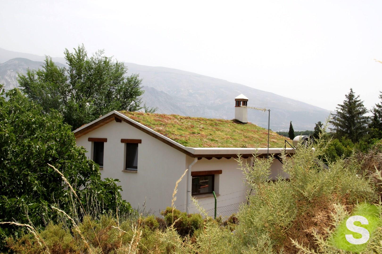 Cubierta vegetal instalada en Granada que realiza el enfriamiento activo