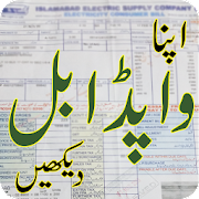 Wapda Electricity Bill Checker
